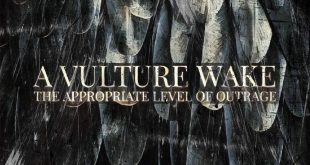 A Vulture Wake - A Common Level Of Outrage