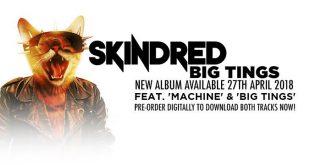 SKINDRED BAIXAR BABYLON CD