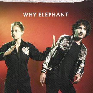 Why Elephant